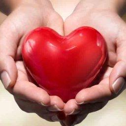 Holding heart - giving