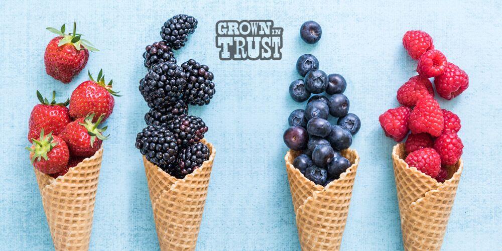 Berries in ice cream cones