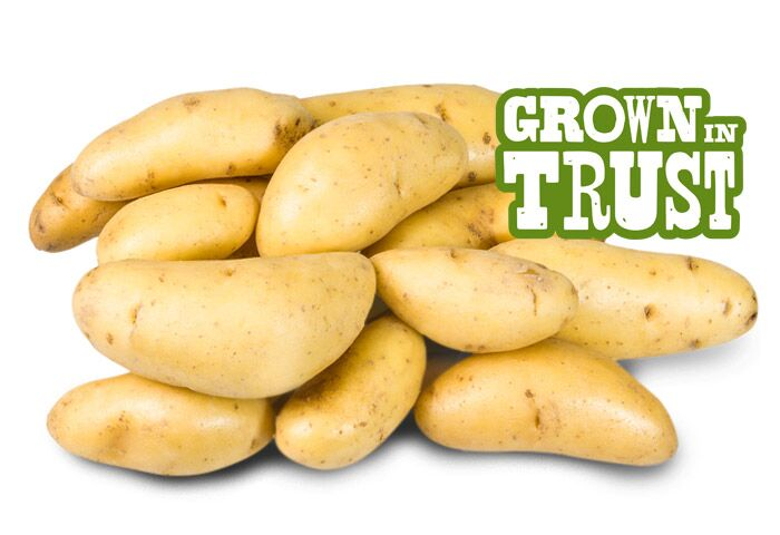 Fingerling potatoes - Grown in Trust by Thomas Fresh
