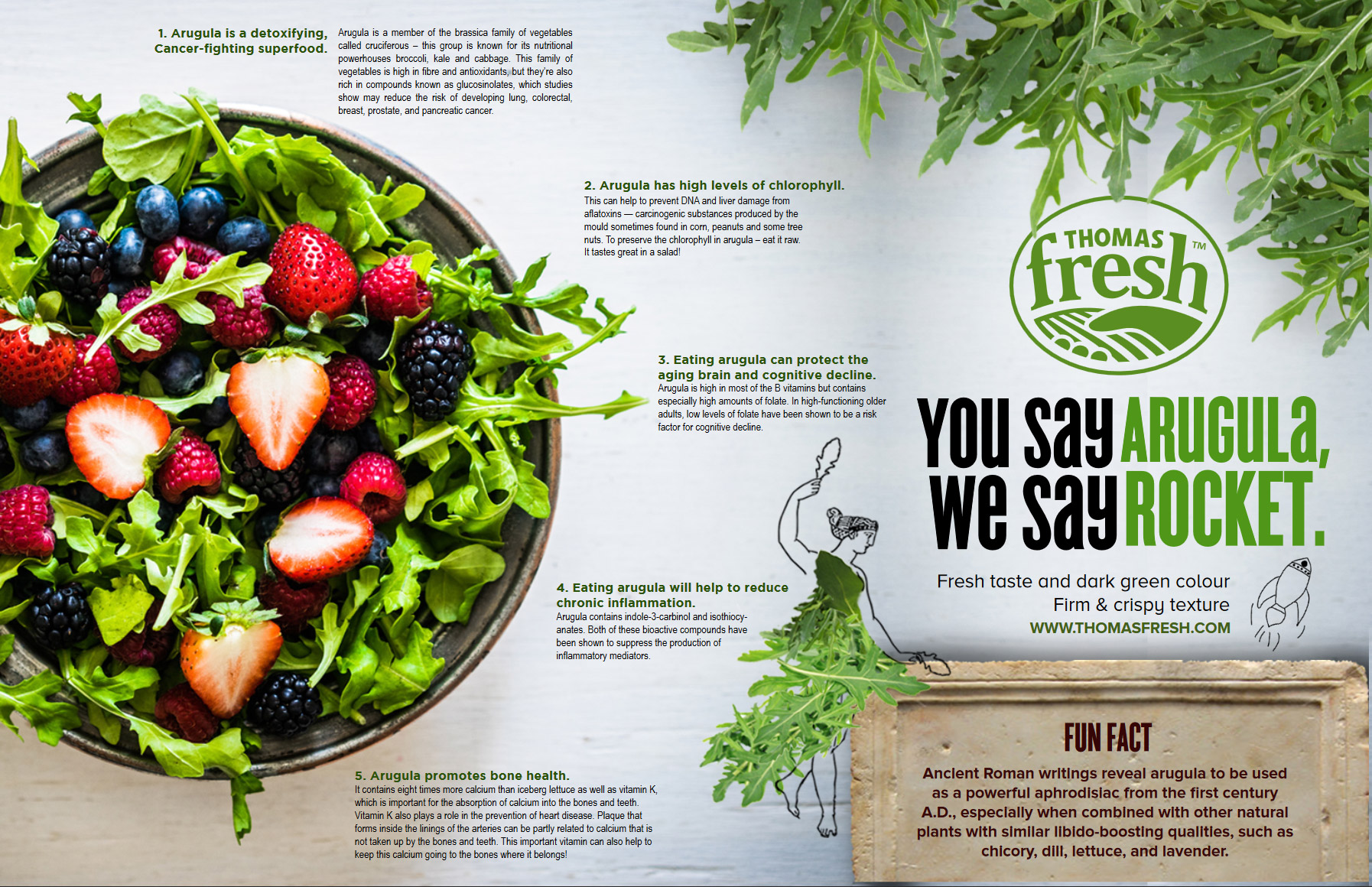 Arugula Infographic - Thomas Fresh