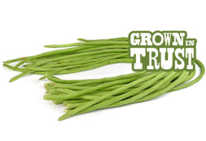 Chinese Long Beans - Grown in Trust