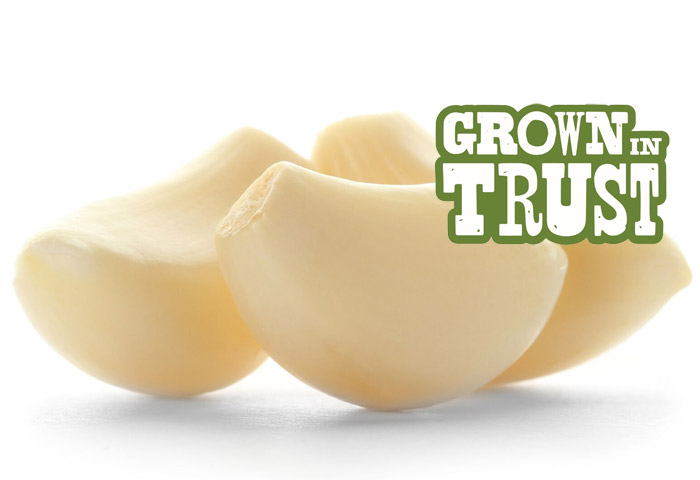 Garlic - Grown in Trust