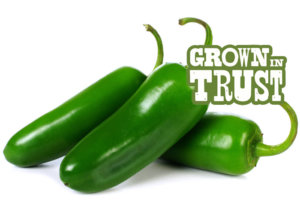 Jalepeno peppers - Grown in Trust