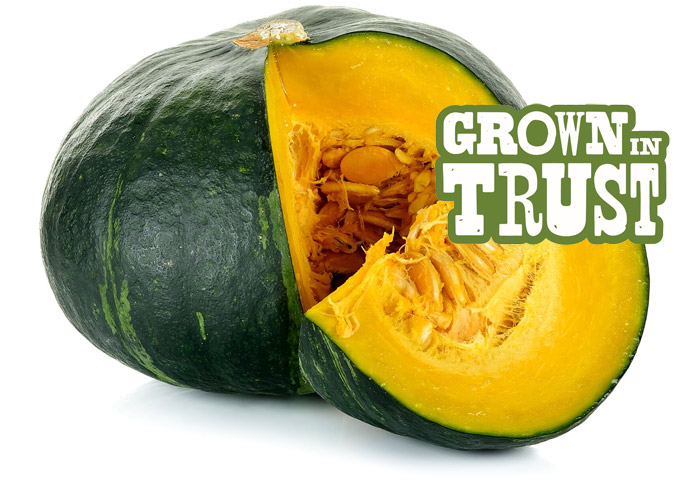 Jamaican Pumpkin - Grown in Trust