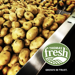 Local Potatoes - Thomas Fresh