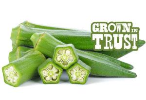 Okra - Grown in Trust