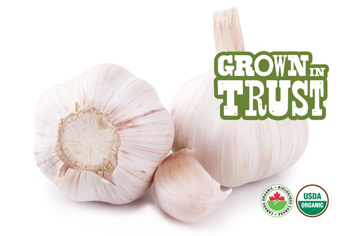 Organic Garlic - Grown in Trust