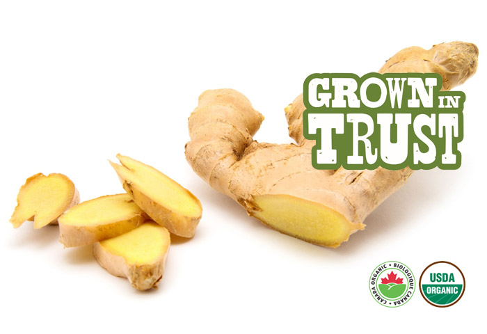 Organic Ginger - Grown in Trust
