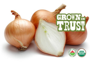 Organic Medium Onions - Thomas Fresh