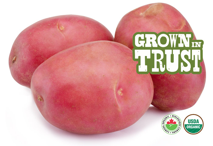Organic Red Potatoes - Thomas Fresh