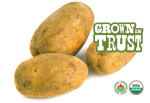 Organic Russet Potatoes - Thomas Fresh