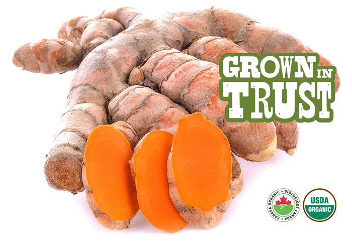 Organic Turmeric - Grown in Trust