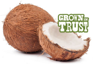 Quick Cracked Coconut - Grown in Trust