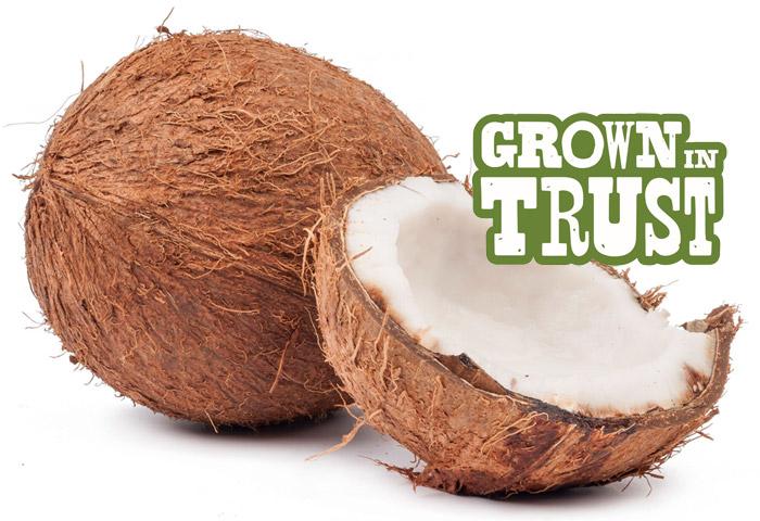 Quick Cracked Coconut - Grown in Trust