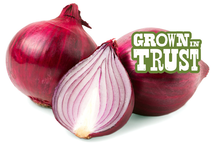 Red Onions - Grown in Trust
