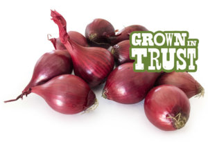 Red Pearl Onions - Grown in Trust