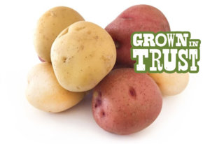 Red and White Small Potatoes - Grown in Trust