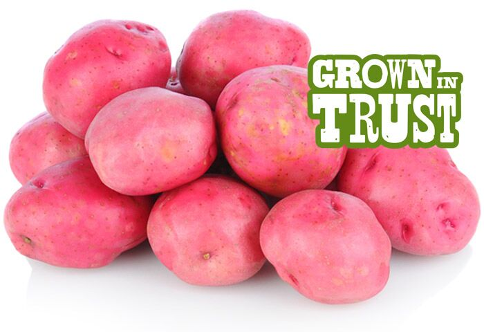 Red potatoes - Grown in Trust by Thomas Fresh