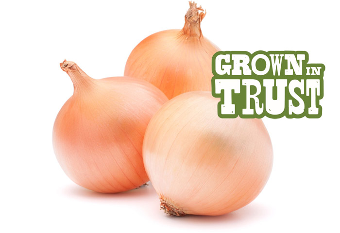 Sweet Onions - Grown in Trust