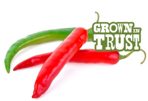 Thai Chili peppers - Grown in Trust