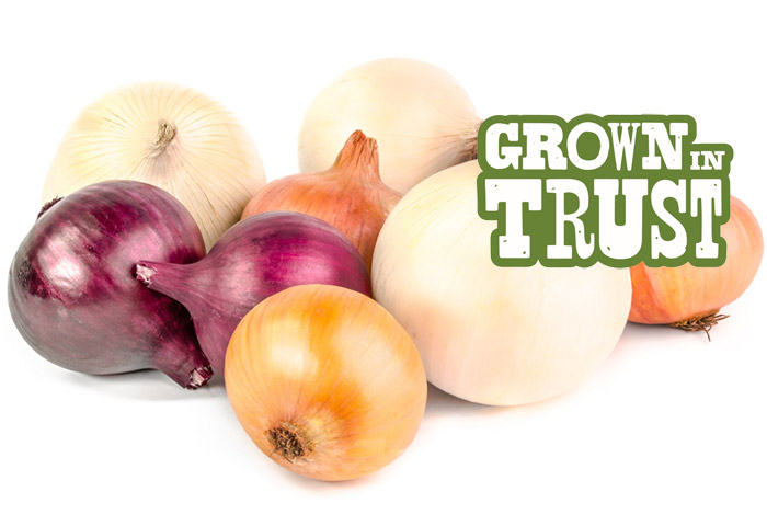 Tri-coloured Onions - Grown in Trust