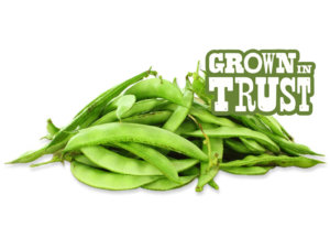 Valor beans - Grown in Trust