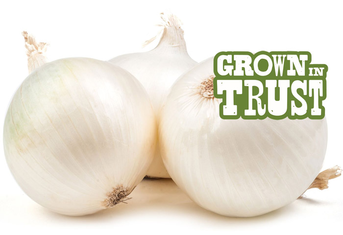 White Onions - Grown in Trust