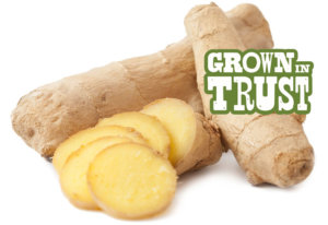 White Turmeric - Grown in Trust