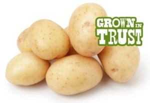 White potatoes - Grown in Trust by Thomas Fresh