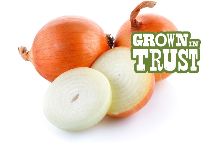 Yellow Onions - Grown in Trust