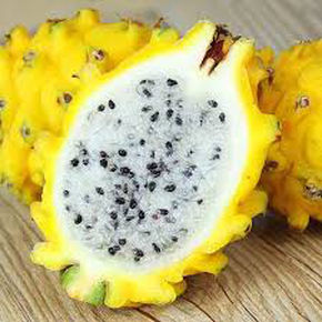 Yellow Skinned Pitaya - Thomas Fresh