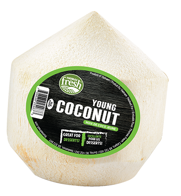 Young Coconut - Thomas Fresh