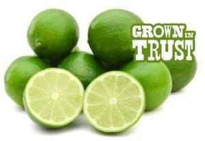 Key Limes - Grown in Trust
