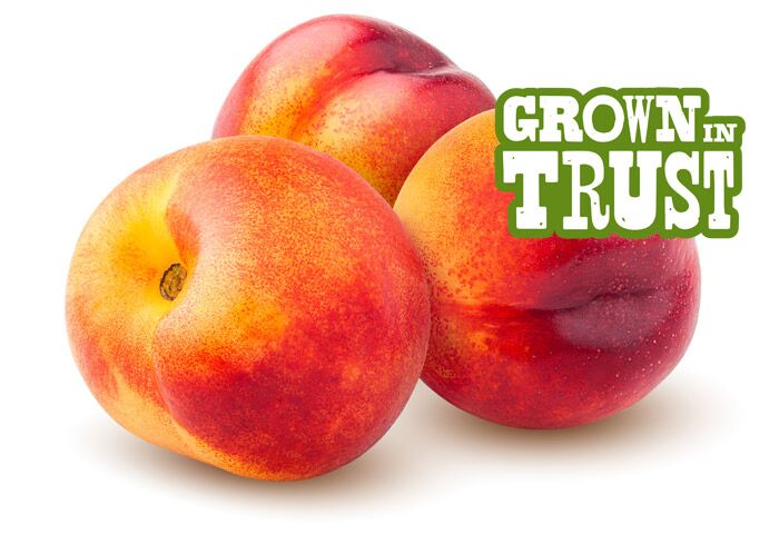 Thomas Fresh Nectarines - Grown in Trust