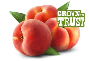Thomas Fresh peaches - Grown in Trust