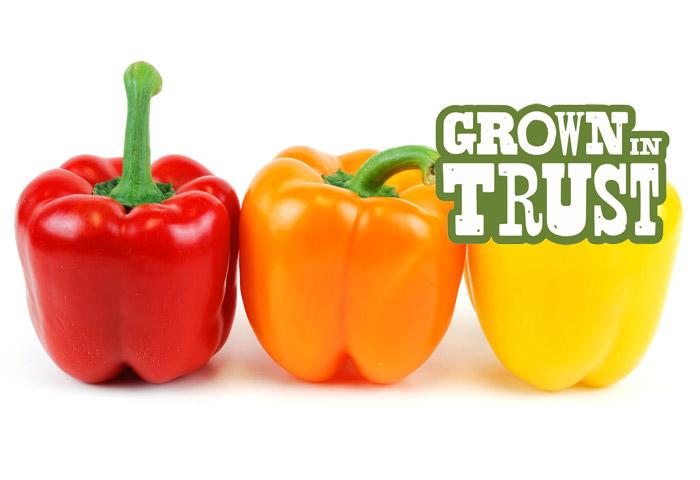 Bell Peppers - Grown in Trust