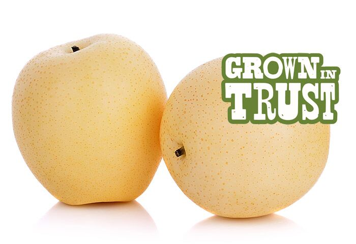 Thomas Fresh Asian Pear - Grown in Trust