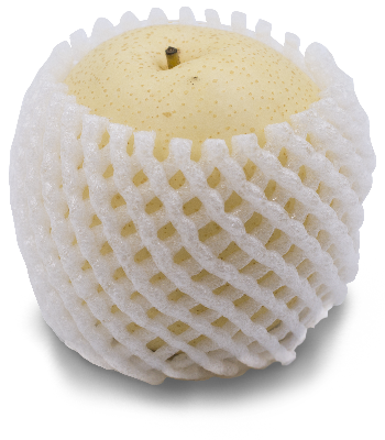 Thomas Fresh - bulk asian pear