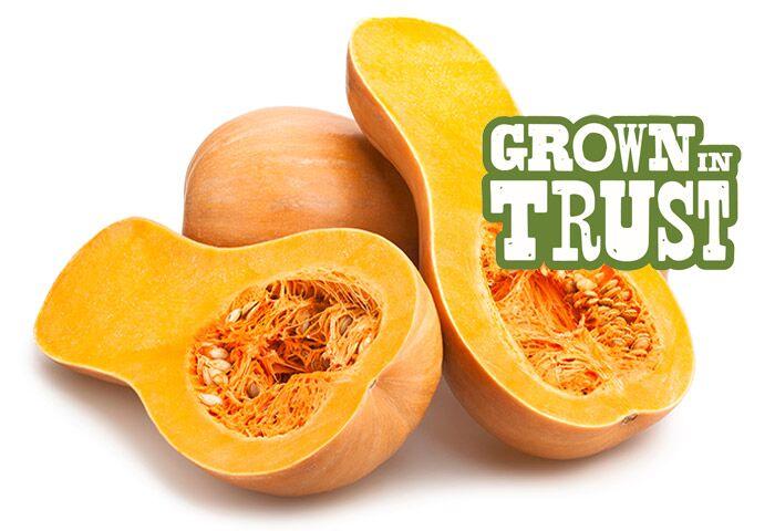 Thomas Fresh Butternut Squash - Grown in Trust