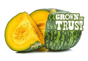 Thomas Fresh Kabocha Squash - Grown in Trust