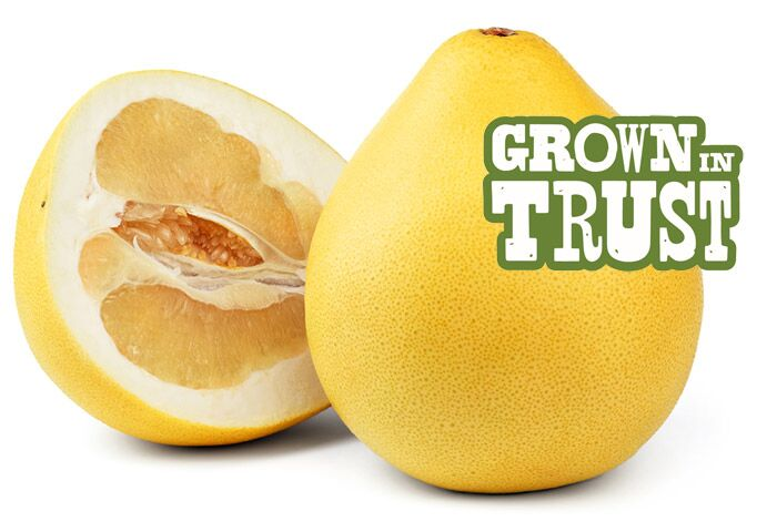 Thomas Fresh Pomelo - Grown in Trust