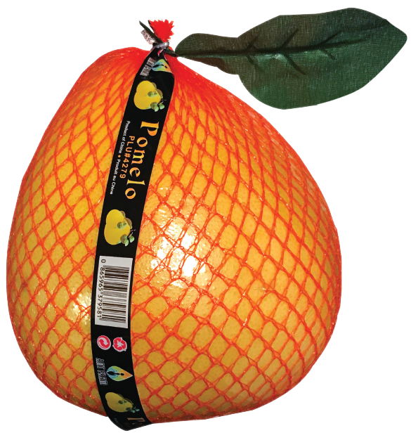 Thomas Fresh - bulk pomelo