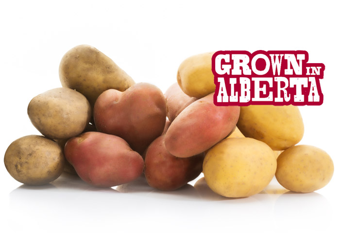 Alberta Potatoes - Grown in Trust in Alberta