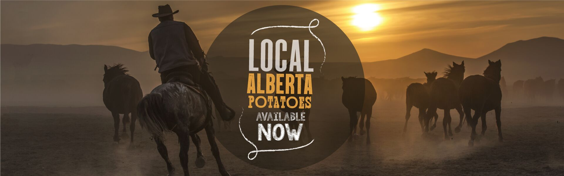 Alberta Potatoes Header