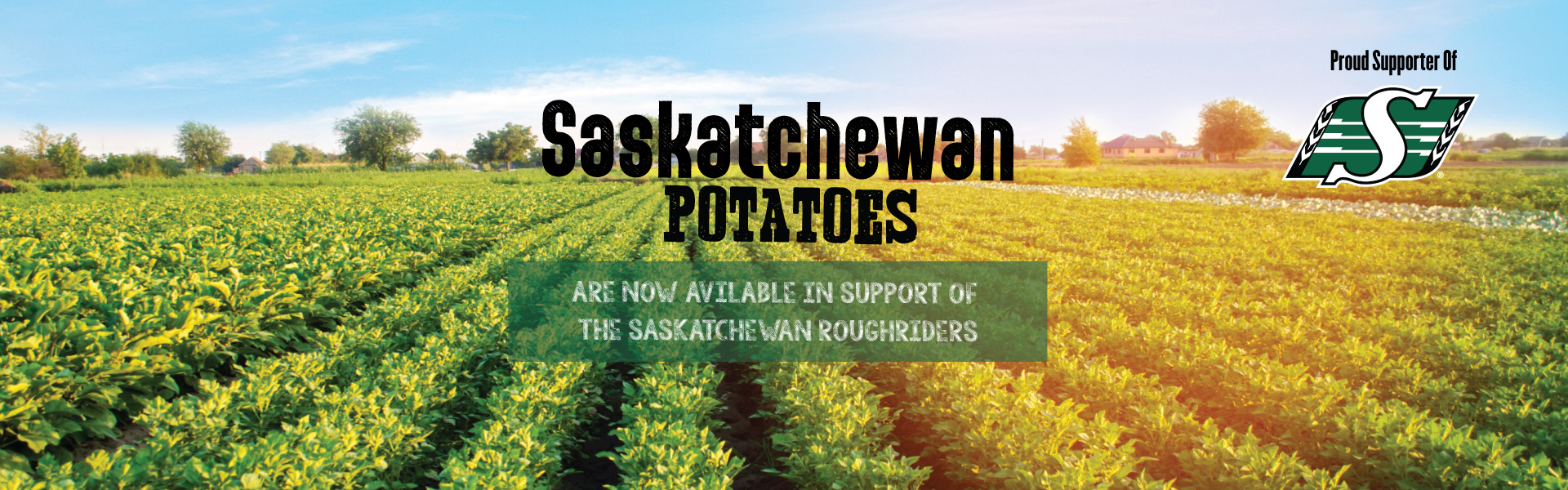 Saskatchewan Potatoes